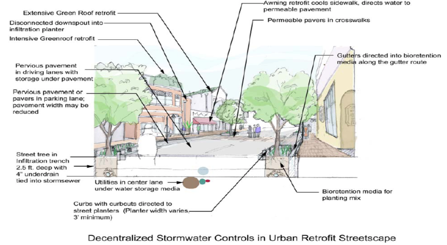 Figure 3.3 – Schematic example of engineered practices in an urban retrofit streetscape.