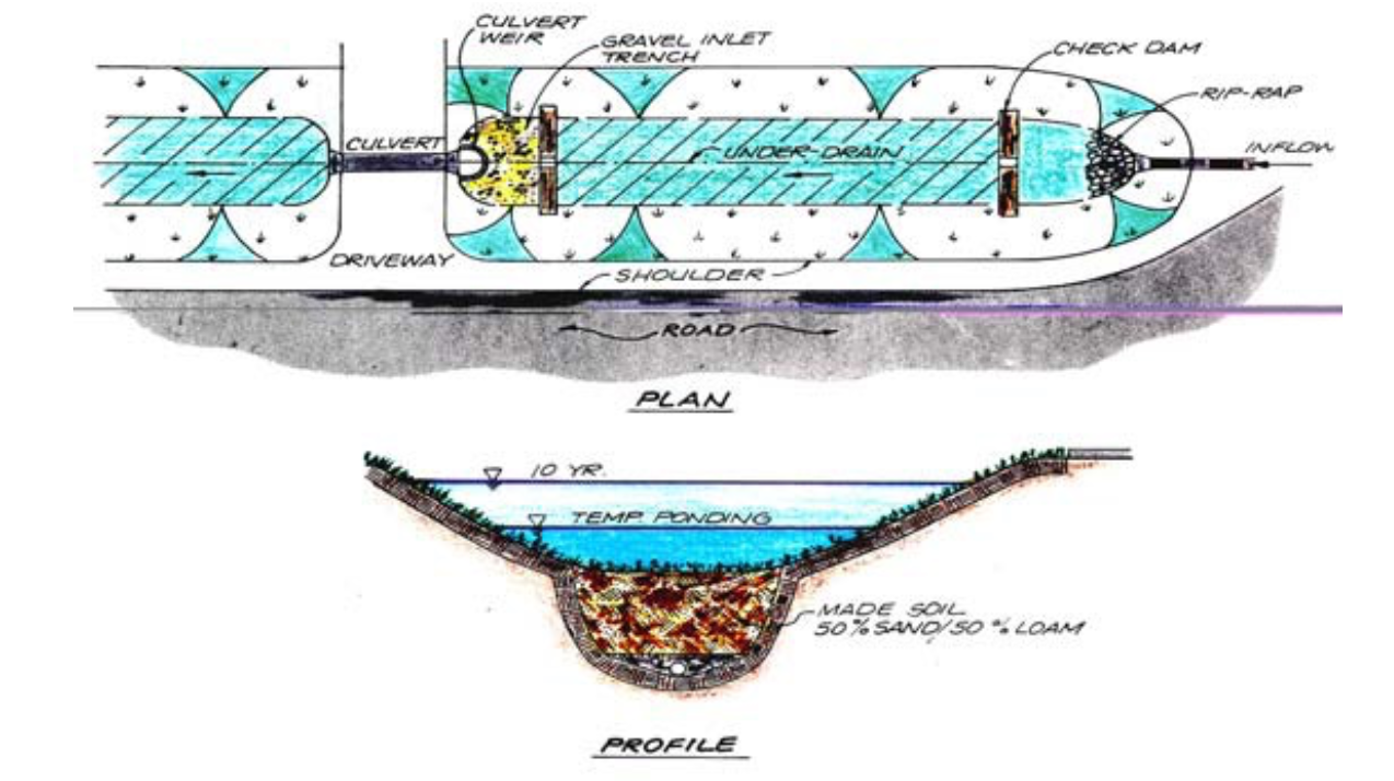 Figure 3.6 Swale design to enhance its ability to filter and infiltrate runoff.