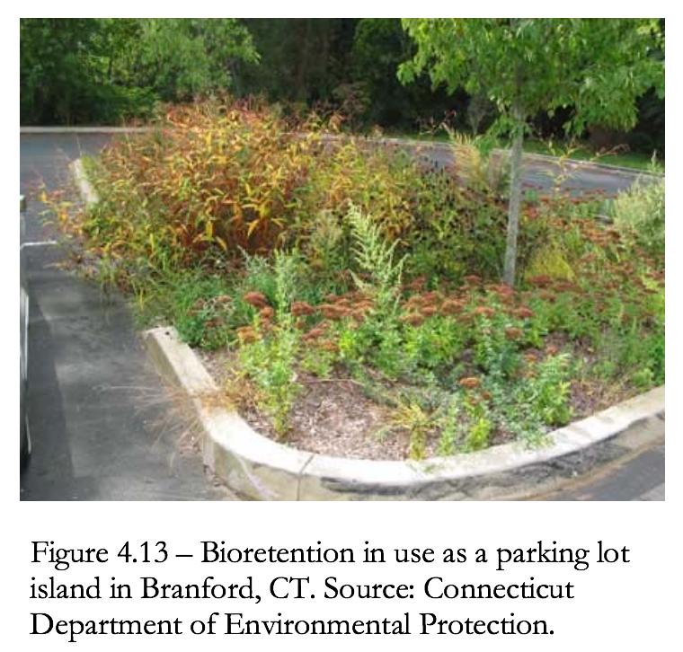 Figure 4.13 Bioretention in use in a parking lot in Branford, CT