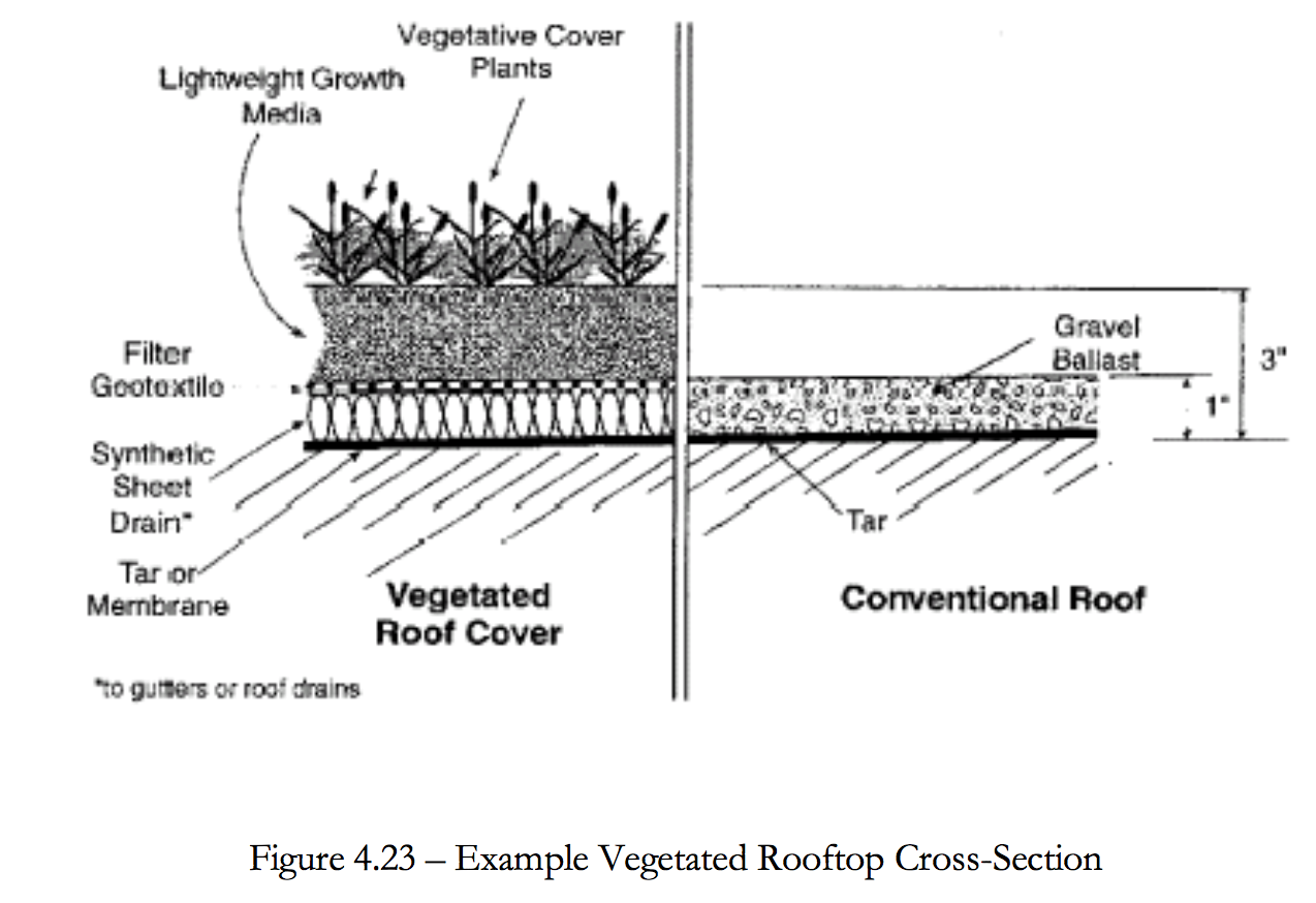 Figure 4.23 Example of vegetated rooftop cross section.