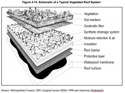 Typical Vegetated Roof System